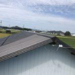 屋根波板補修